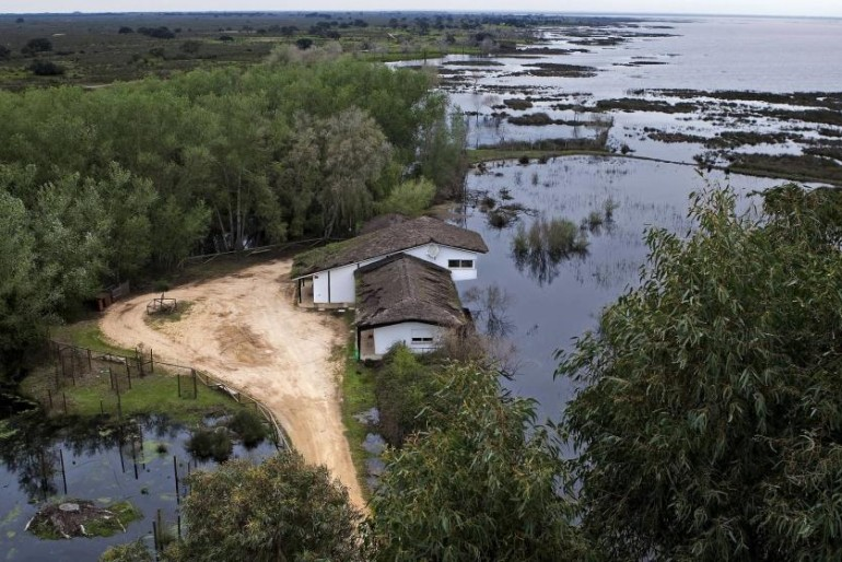 Dragado del Guadalquivir: entre los 15.000 empleos de Sevilla y el peligro para Doñana