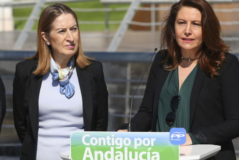 El TSJA reprueba la política urbanística de la exdelegada del Gobierno en Andalucía